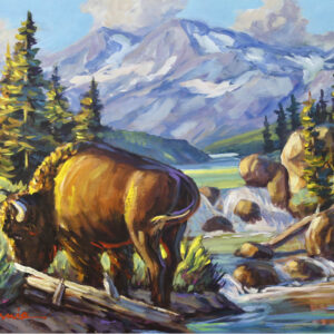 """""""Bison Country"""" by Larry Pirnie"""